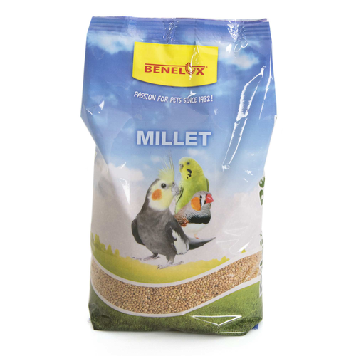 YELLOW MILLET NR1:SUPERIOR 1 KG