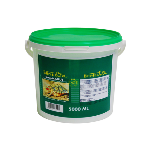 GAMMARUS TURTLE FOOD 5000 CC BUCKET
